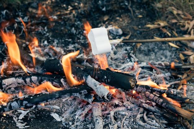 焚き火の上スティックでおいしいと甘いマシュマロ