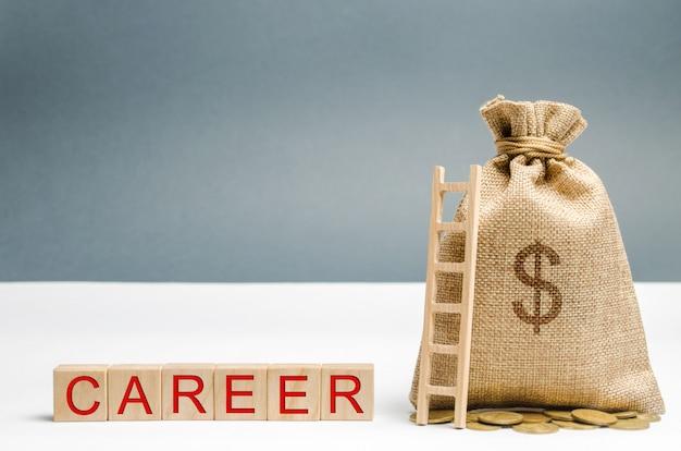単語のキャリア、お金の袋、はしごを持つ木製のブロック。自己啓発とリーダーシップスキル。