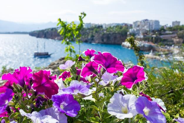 手前の明るい花を通してアンタルヤの地中海の港の眺め