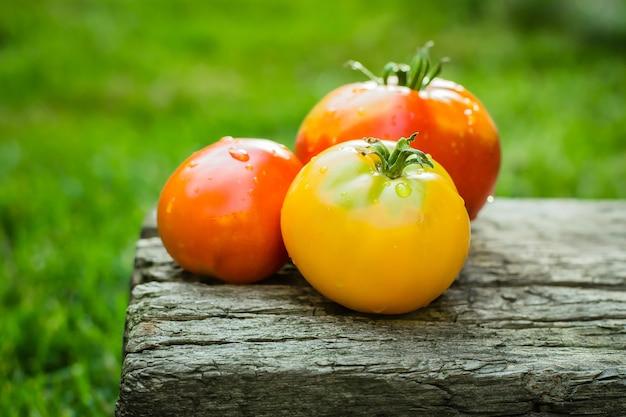 古い木の板にトマト。有機夏の食べ物。コピースペース