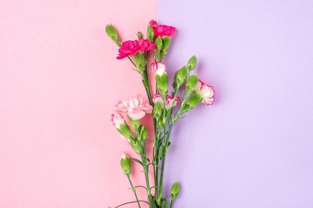 二重のカラフルな背景の異なるピンクのカーネーションの花の花束平面図フラットレイアウト