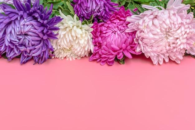 パステル調のピンク色の背景にアスターの花。平置き。