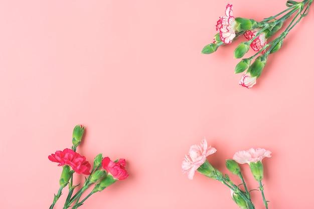 Букет из различных розовых гвоздик цветов на розовом фоне вид сверху. с днем святого валентина или день матери концепции