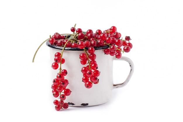 赤スグリのカップ