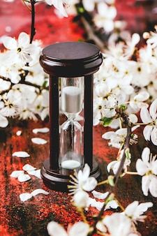 Старинные песочные часы с цветущей ветвью