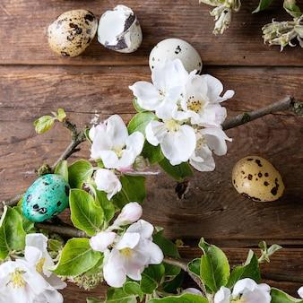 Красочные пасхальные перепелиные яйца
