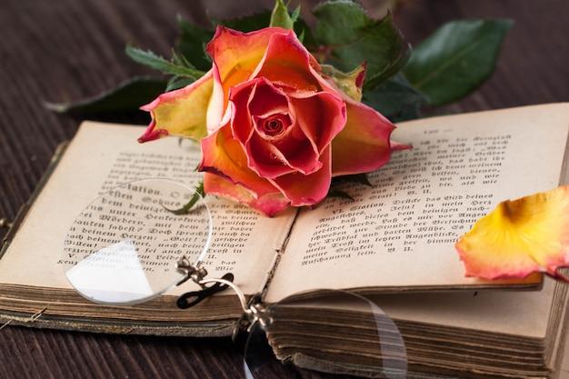 Оранжевая роза со старой книгой и очками