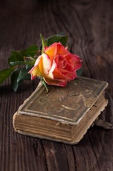 Оранжевая роза со старой книгой