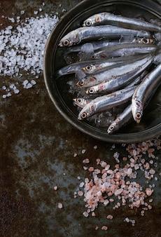 Сырые свежие анчоусы рыб