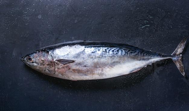生の新鮮なマグロの魚