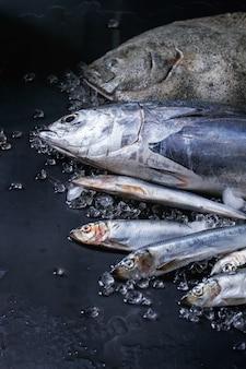 Сырой свежий тунец, сельдь и камбала