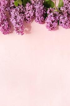 Сиреневые цветы на розовом