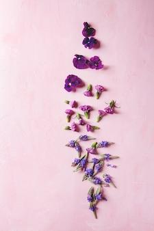 Фиолетовые съедобные цветы