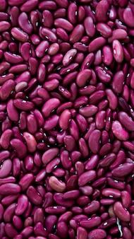 紫豆の背景、紫豆の種子を垂直に閉じる