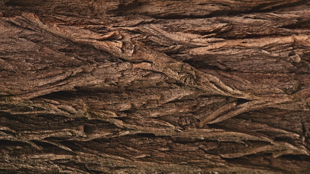木の茶色の樹皮のレリーフテクスチャ背景。デバイスの壁紙