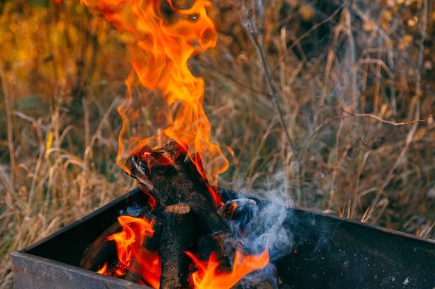 バーベキューのために火で炭を燃やす。閉じる