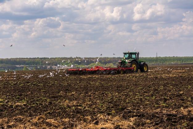 トラクターは畑を耕します。野原を一周する鳥の群れ