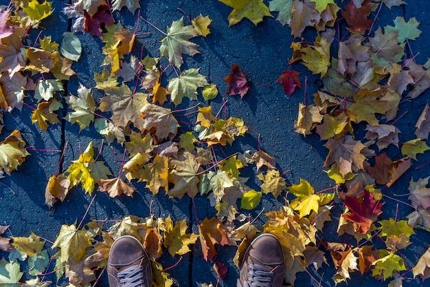 秋の黄色いメープルの葉はアスファルトの上に横たわっています。メンズスニーカーのトップビュー