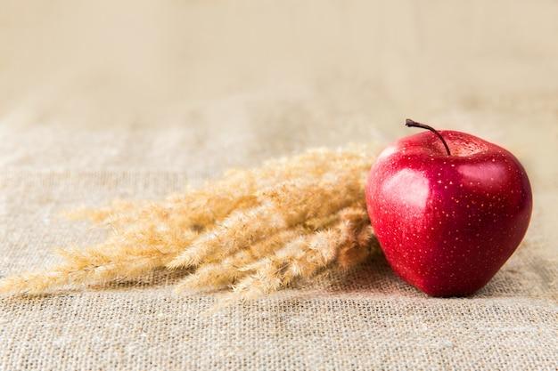 繊維の背景にスパイクと赤いリンゴ。健康的な食事