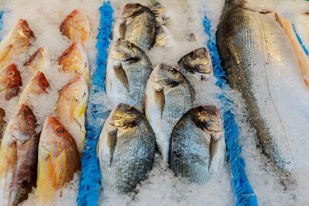 魚市場で氷の上で新鮮な魚介類