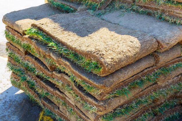 緑の草の芝生は、損傷を受けた芝生を修復したり、新しい美しい芝生地を作ったりするのに使用しました