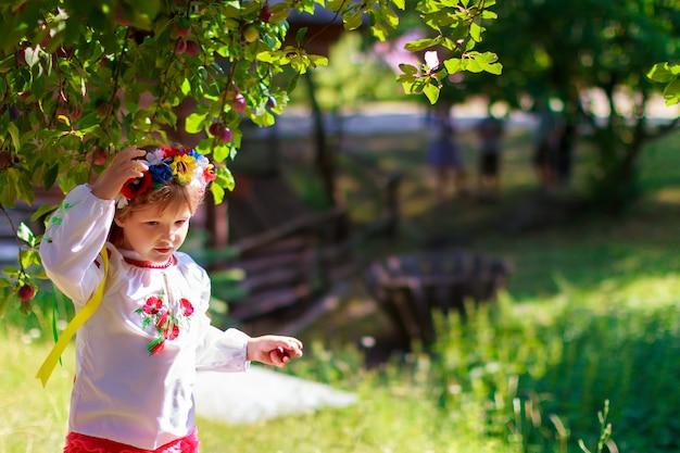 葉の背景に対してウクライナの伝統的な花輪のセット