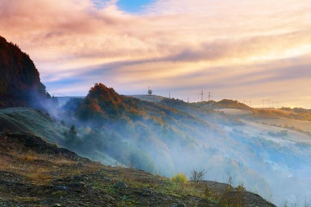 山の針葉樹林の暑い日の出と寒い朝の霧