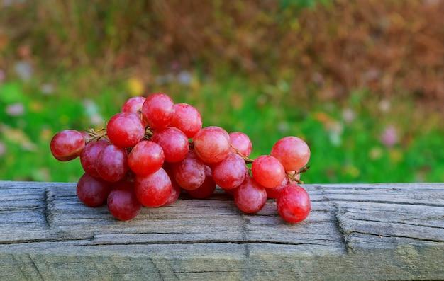 秋の背景黄色の背景に素朴な枝編み細工品トレイにブドウを残します。