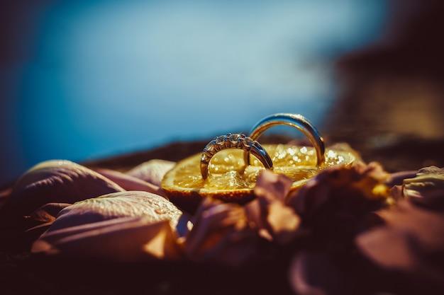 Обручальные кольца на мягкой предпосылке, селективный фокус, макрос