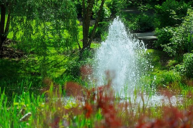公園の湖の上の噴水。