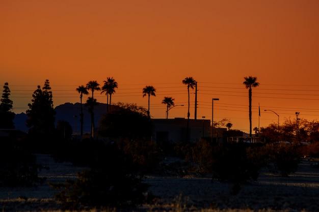 ヤシの木と古典的なアリゾナの夕日に山と黄金の時間