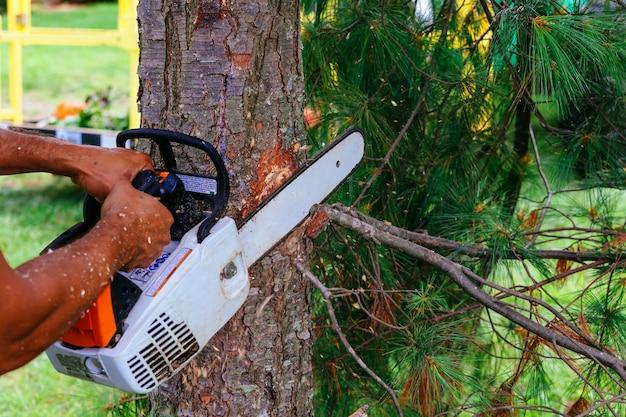 森の中でチェーンソーを持つ労働者