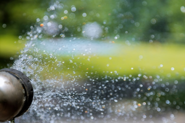 庭のホースからの水ぼやけ水ボケデフォーカス