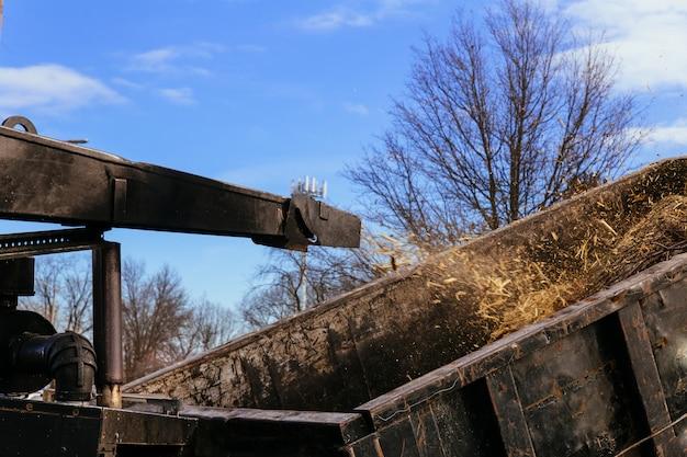 チッパーマシンを使用してチェーンソーの木の枝を削除および運搬する造園家