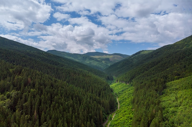 山の空撮緑の草の夏の山。