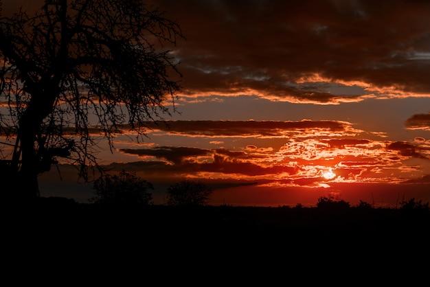 燃えるようなオレンジと紫の夕日の美しい空。