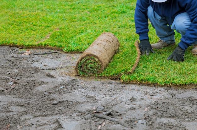 新しい庭の芝生の芝生芝ロールを敷設する男