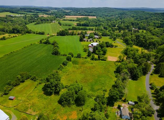 Красивый панорамный пейзаж с высоты зеленого поля против в лесу