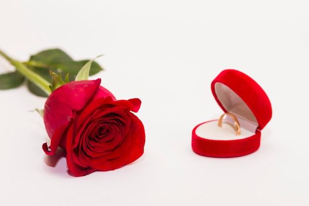単一の赤い花ローズはコピースペースと白い背景に横たわっていた。挨拶のコンセプトです。