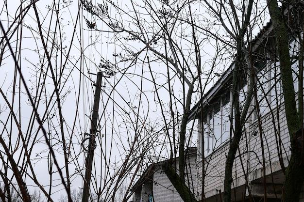 曇りの日の夕方、貧しい村の通りの古い家。木の中で。