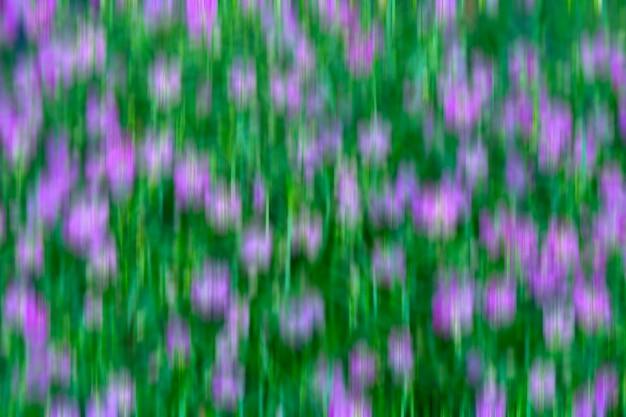 抽象的な背景 - 緑の背景に紫の花。