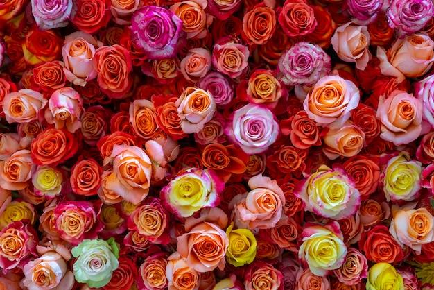 美しいバラの背景。結婚式と婚約の花の抽象的な背景。