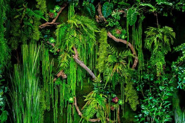 Зеленый тропический цветочный фон. текстура натуральных зеленых растений.