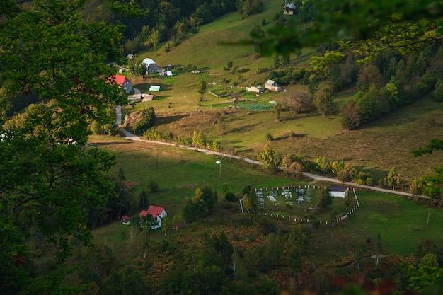 野生の風景の木の家