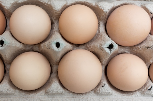 紙の卵トレイボックスに鶏の卵のグループ。イースターのテーマ