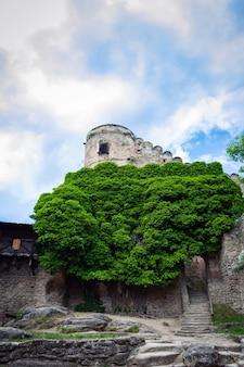 防御的な壁と中世の城の要塞。