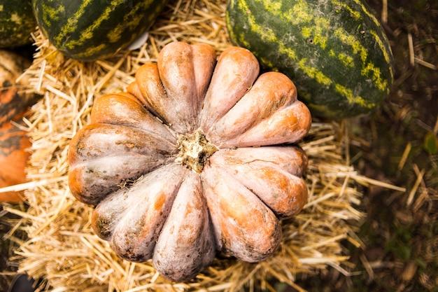 干し草のオレンジ色のカボチャ。秋。収穫。