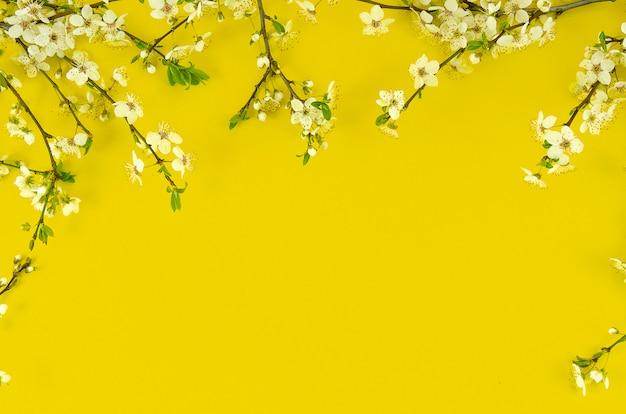 日当たりの良い黄色の背景にボーダー配置白い花の木の枝と夏の背景。