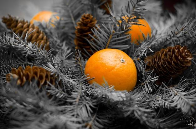 モミの枝、マンダリン、コーンのクリスマスの花束。新年。モノクローム