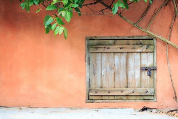 セメントの壁とツタの古い木製のドア。